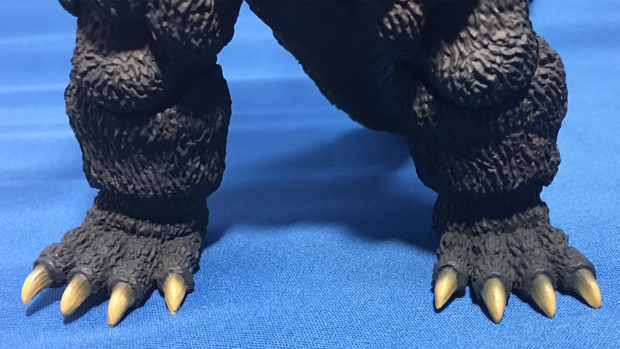 足の爪の塗装はかなり個体差があるらしい